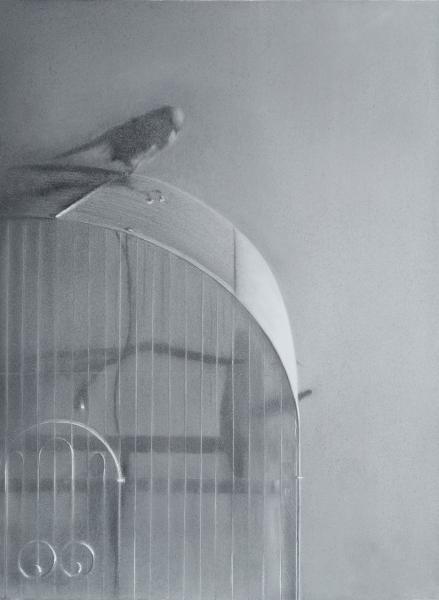 9_Bird-on-Cage