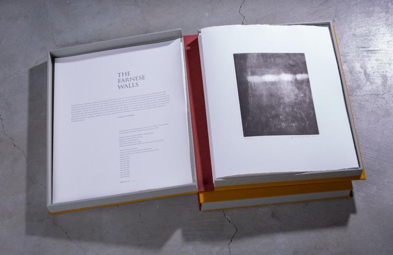 Farnese Walls Book